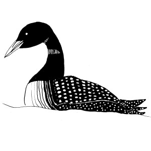 Hand drawn loon